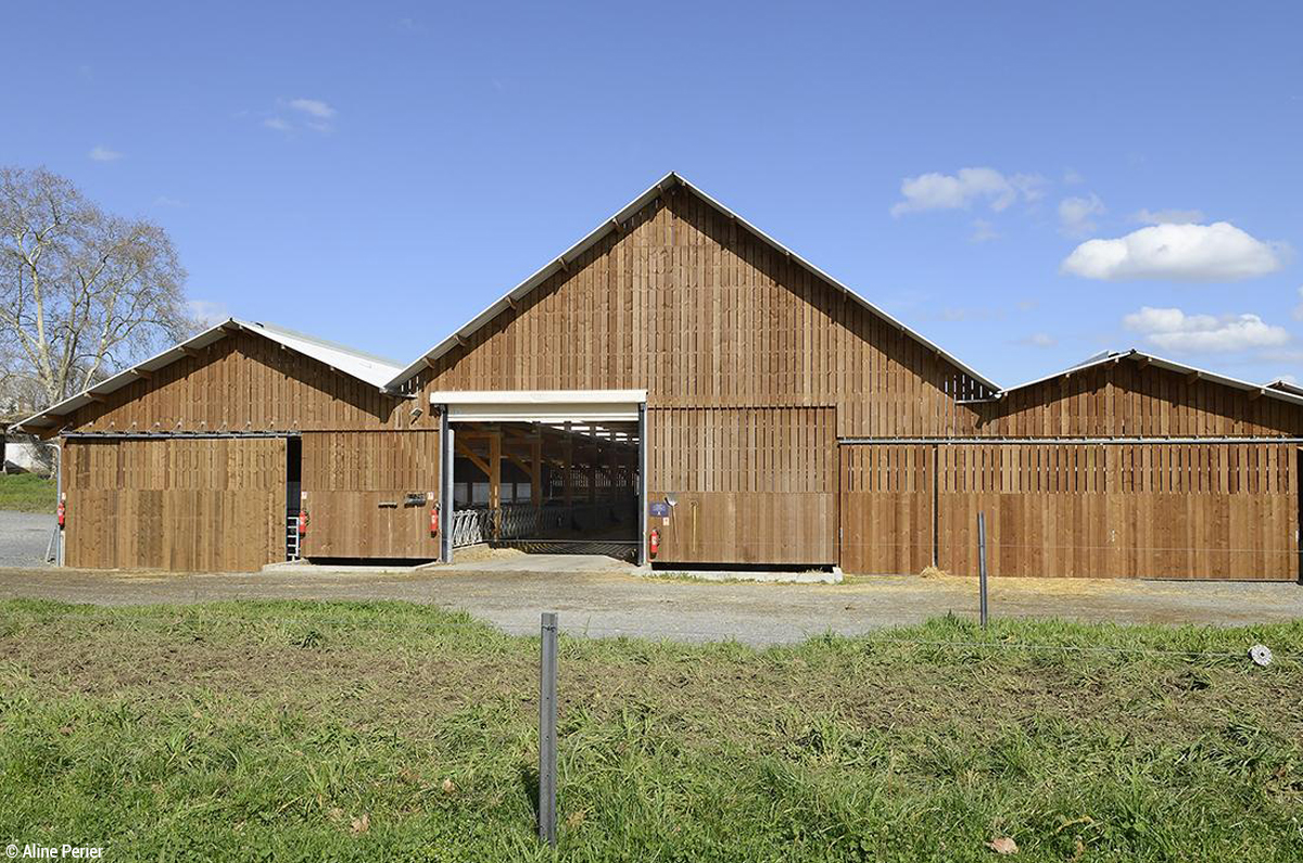 bâtiment agricole en bois stabulation construction bois